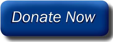 The Nokota Horse Conservancy - Home Blue Donate Now Button