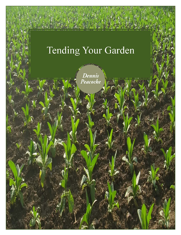 Tending your garden cd series gostrategic for Tending to the garden