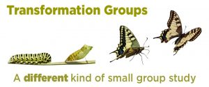 Banner Ad Transformation Group